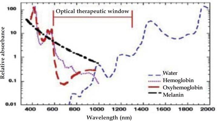 optisch kader voor lichttherapie biofotomodulatie
